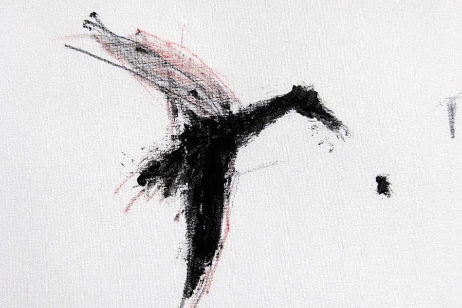 Il passaggio degli stormi nella mostra di Gianni Nieddu all'(In)visibile