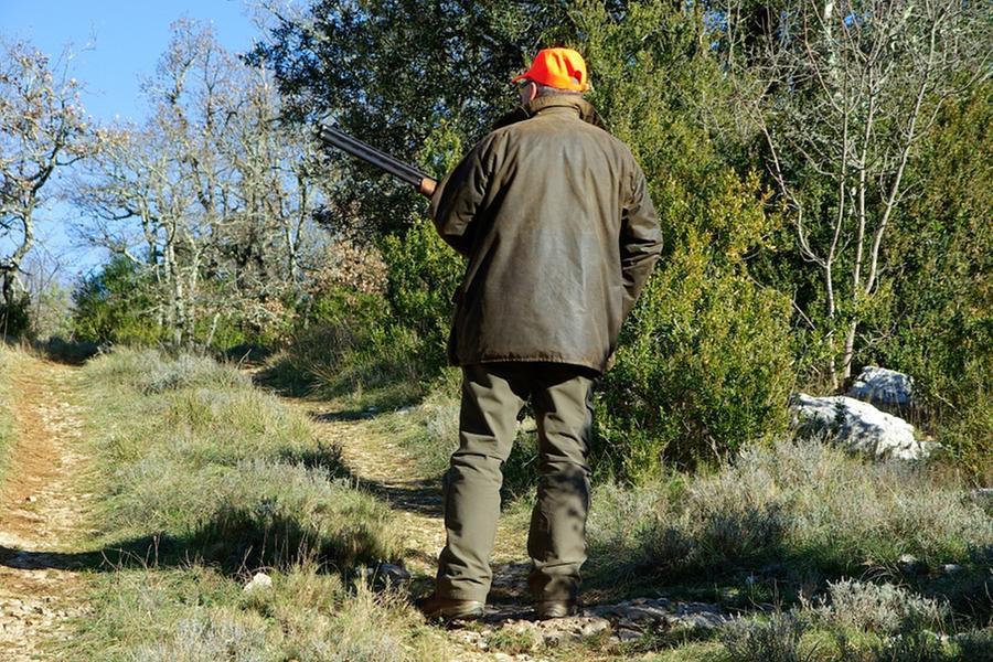 In Sardegna si apre la stagione della caccia,ma a tre uccelli non si potrà sparare