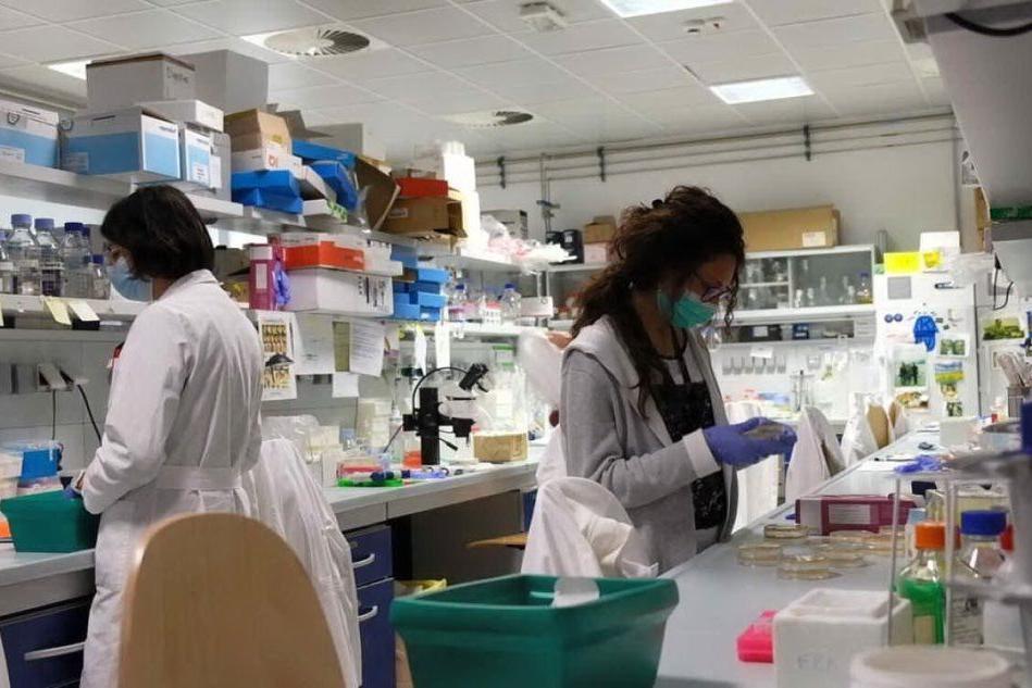 Lega per la lotta contro i tumorie Università di Sassari alleate