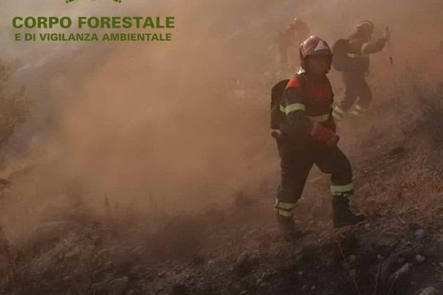 In fiamme le campagne di Oniferi e Siniscola, elicotteri in azione