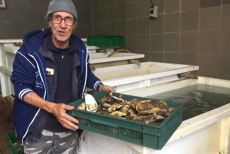 Santa Gilla inquinata, la rabbia dei pescatori