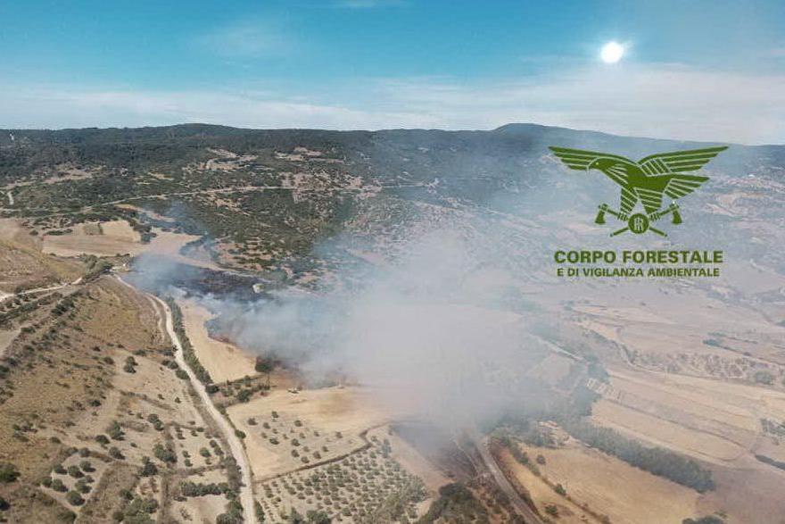 L'incendio di Siris (foto Corpo forestale)