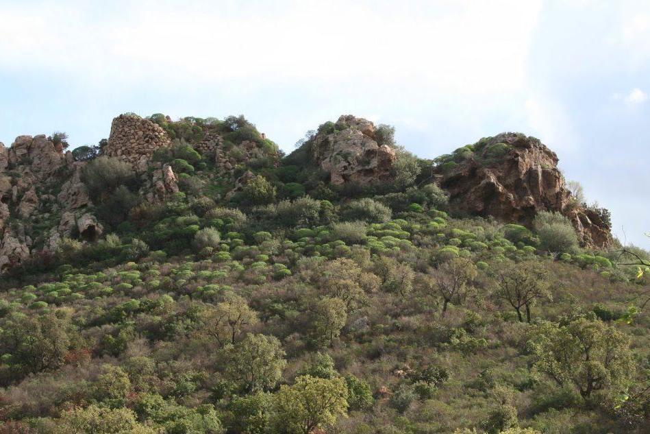Scavo e conservazione dei beni archeologici, una giornata di studi a Sarroch