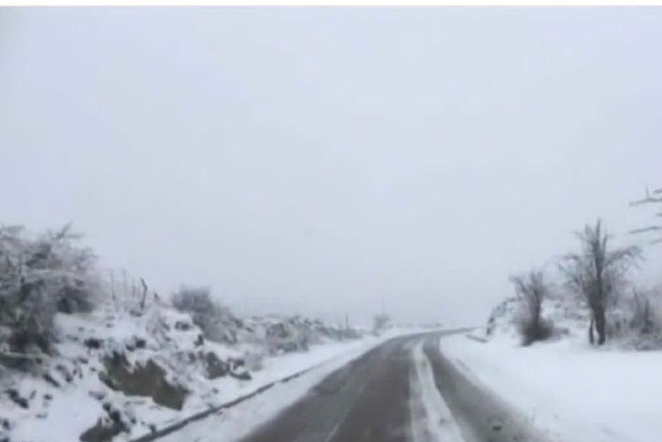 Neve sul Gennargentu, il risveglio invernale della montagna VIDEO