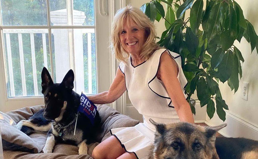 La first lady Jill Biden insieme a Champ e Major (foto Ansa)