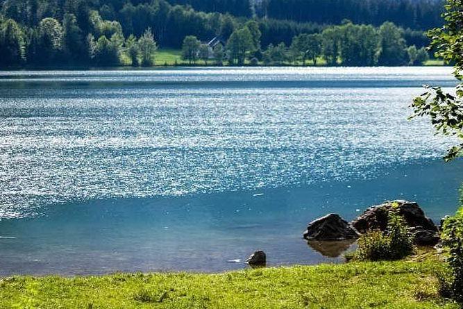 Fa il bagno nel lago e muore a 13 anni: un'ameba gli mangia il cervello