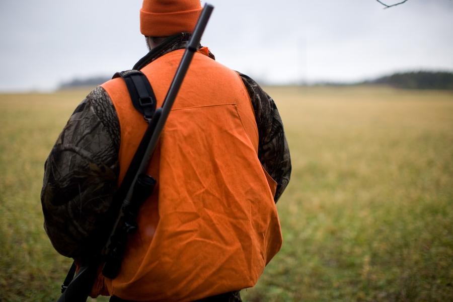 Lepri e pernici, dalla Regione via libera ad altre due giornate di caccia