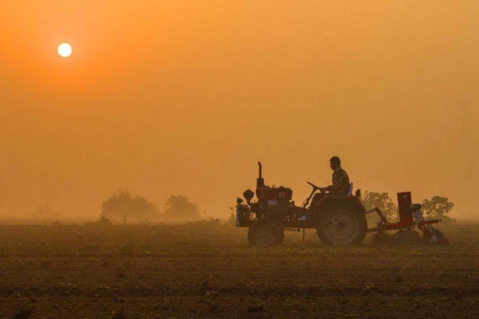 Giovani agricoltori: risorse per 50 milioni. Ecco come accedere al bando regionale