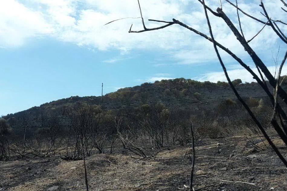 La zona investita dalle fiamme