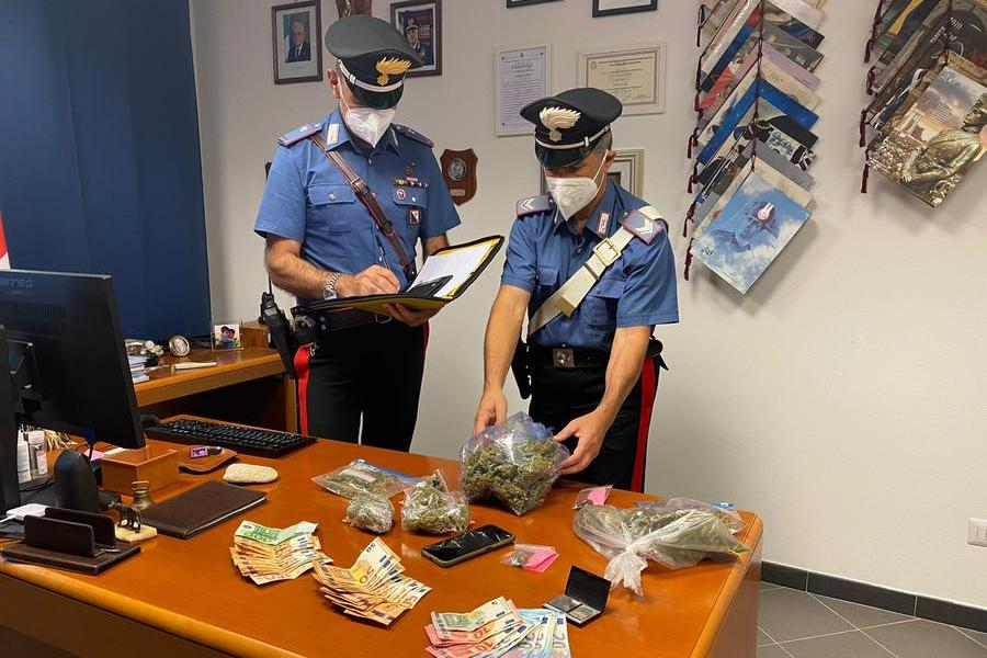 In casa hashish, marijuana e 1.700 euro in contanti: Arzachena,in manette 24enne