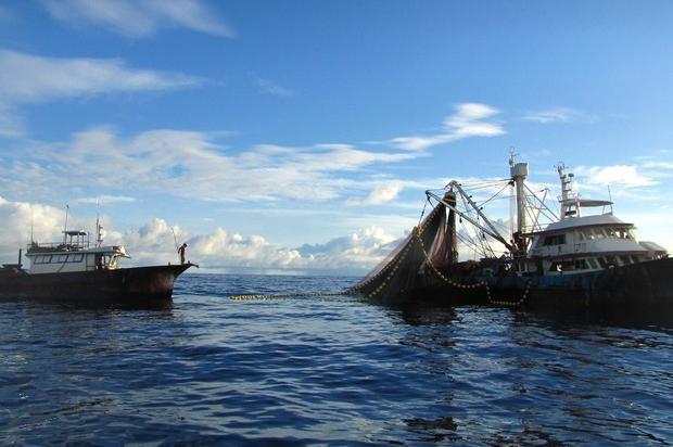 Pesca sostenibile: 6,2 milioni di euro per i progetti nelle aree marine protette