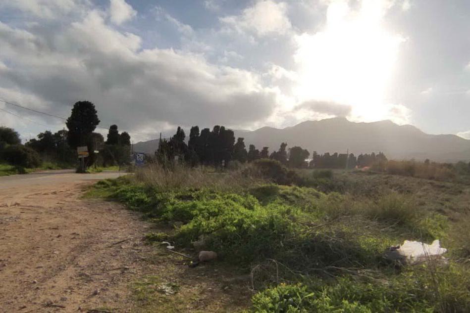 Capoterra: gli incivili abbandonano scarti di macellazione in campagna