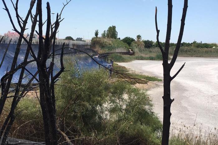 Il ponte dopo il rogo (foto Ansa)