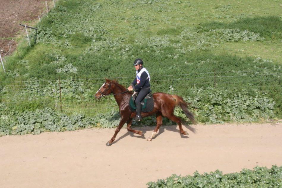 Endurance, Cassoni vince la quarta tappa a Monastir
