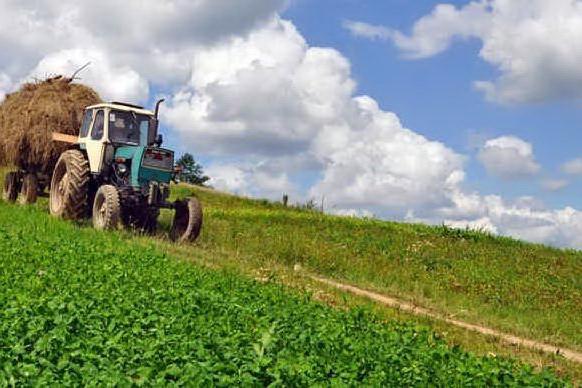 Produttori agricoli sardi, un bando per aiutarli a promuoversi