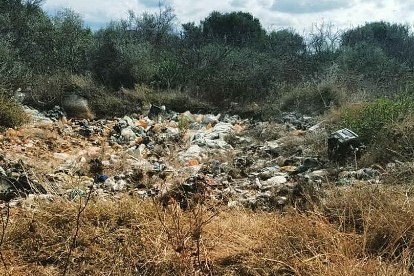Olbia, i ragazzi di Fridays For Future ripuliscono l'isola Manna