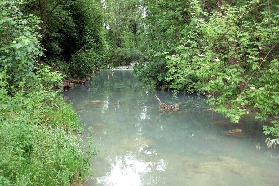 Si tuffa nel fiume, 17enne muore inghiottito dalle acque
