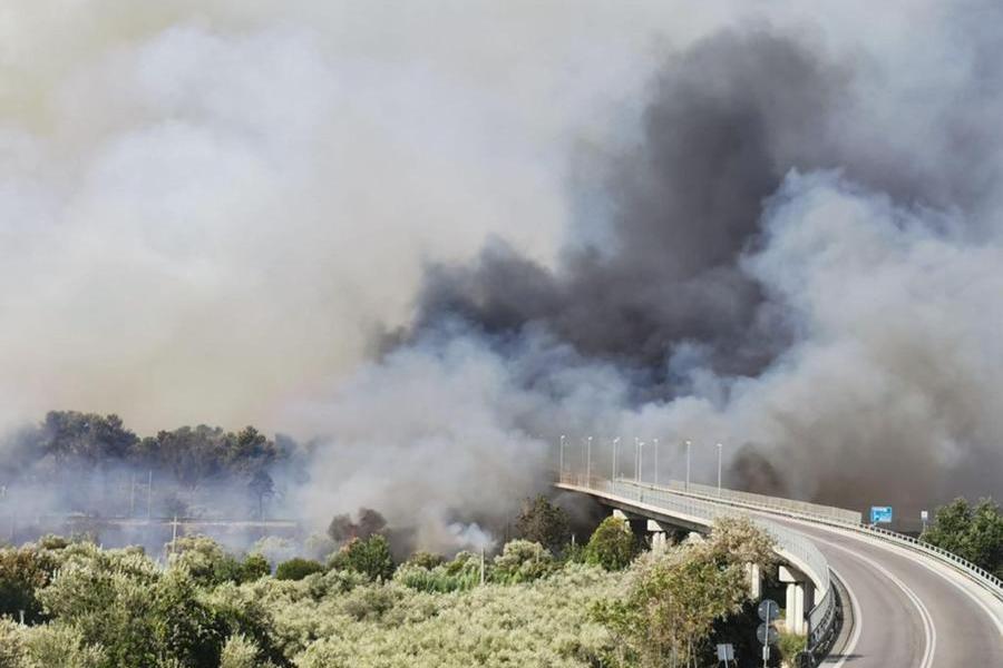 La zona dell'autostrada A14 nel tratto pescarese durante il vasto incendio (Ansa)