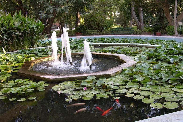 Università di Cagliari:tantiappuntamenti per i 400 anni allafacoltàdi Biologia e Farmacia
