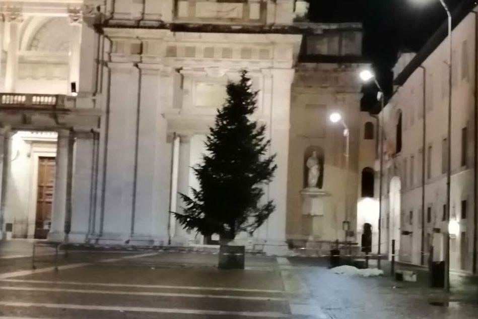 Dalla Sardegna il dono per la basilica papale di Assisi