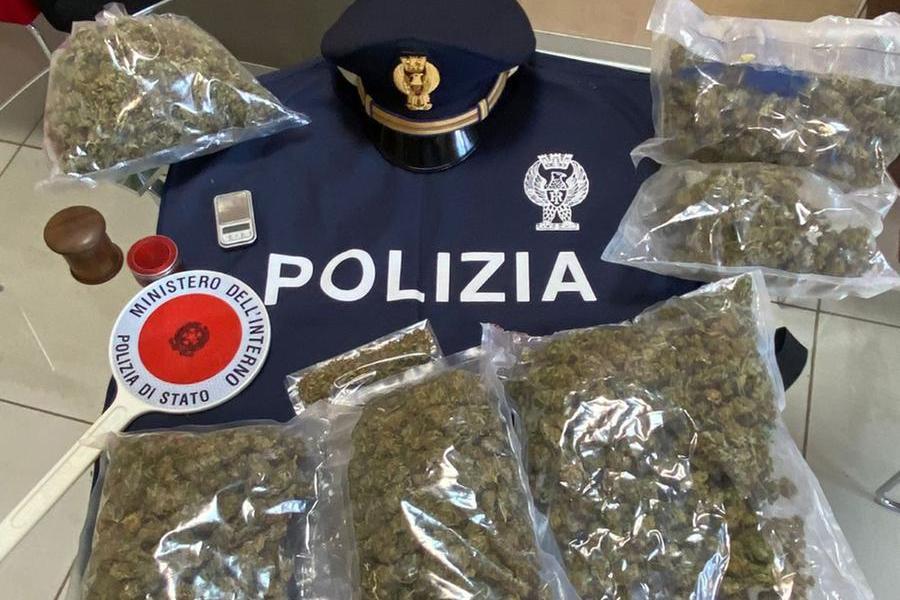 In casa un chilo e mezzo di marijuana, coppia arrestata a Sassari