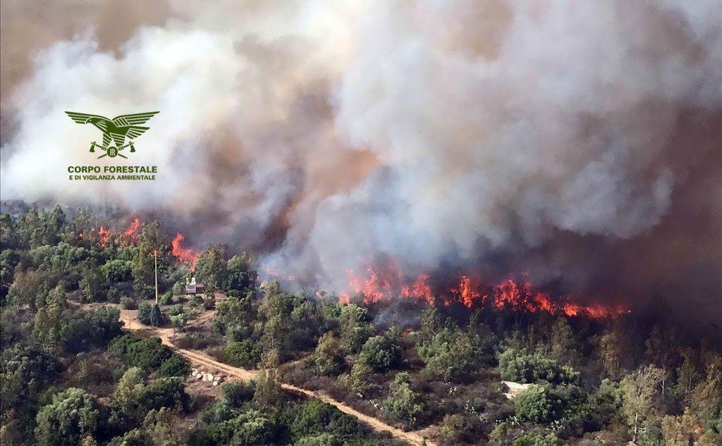 Distrutti ettari di macchia mediterranea e bosco (Ansa)