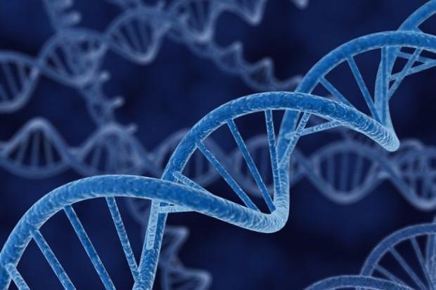 Una biobanca del Dna dei sardi per studiarne la longevità