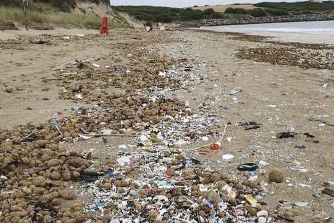 """""""Vogliamo pulire la spiaggia"""". Ma in tre mesi nessuna risposta dal Comune"""