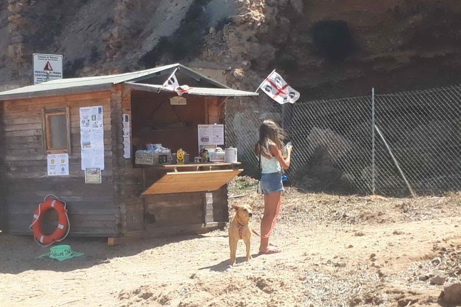 La dog beach (foto Pani)