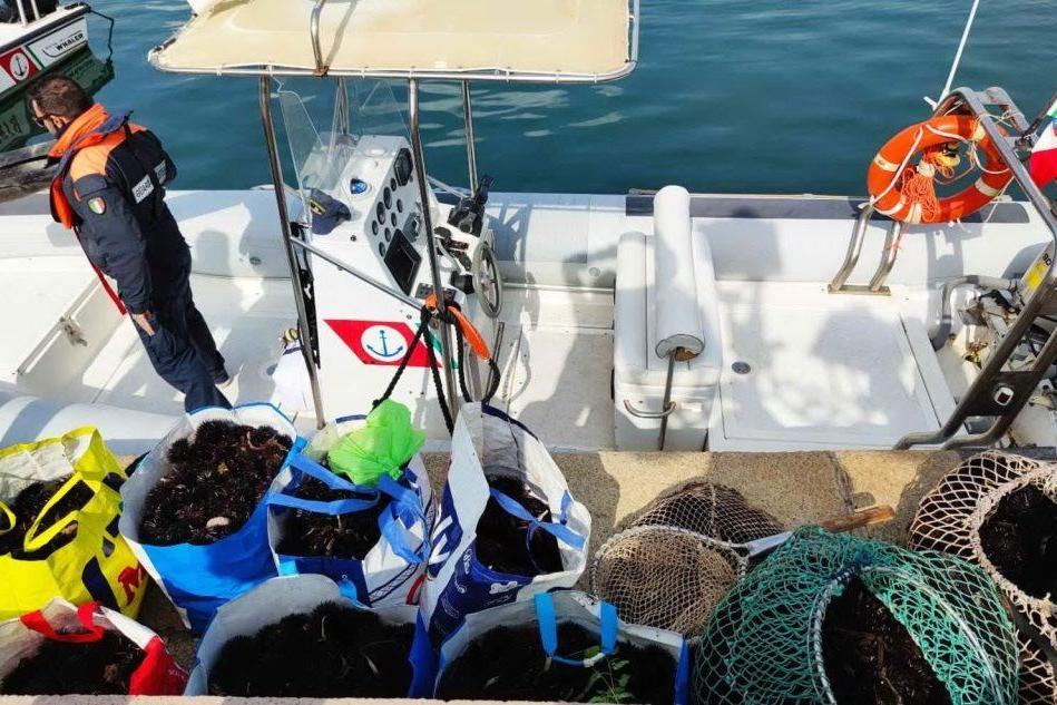 Alghero: sanzioni e sequestri dopo le verifiche nel settore della pesca