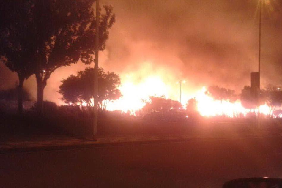 Un recente incendio nel parco di Molentargius