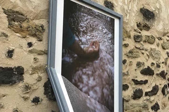 Mogoro, danneggiate tre opere della galleria fotografica all'aperto di BìFoto Fest