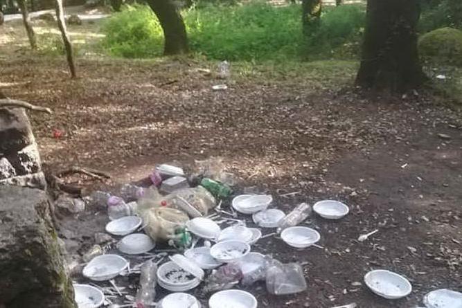 I piatti abbandonati (Foto A.Tellini)