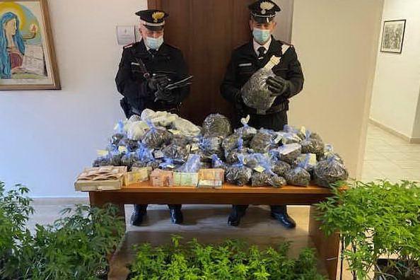 Una serra di marijuana e 10 kg di infiorescenze: Olbia, coppia di fidanzati in arresto