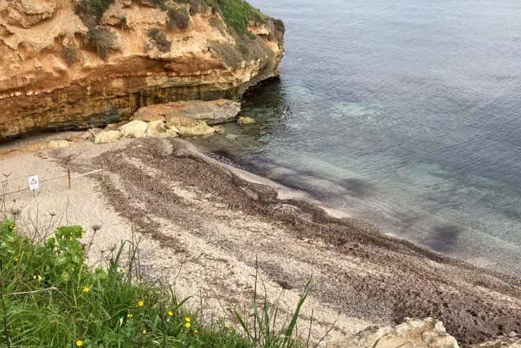 """Erosione a Porto Torres, le spiagge di""""Farrizza e Abbacurrente a rischio""""chiusura"""