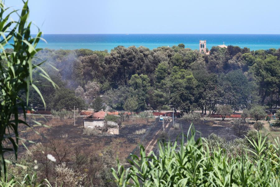 La Pineta Dannunziana bruciata (Ansa - Valeri)