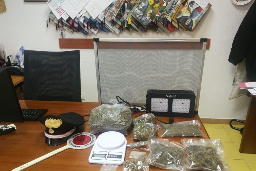Giovane violento e fuori controllo, arrivano i carabinieri di Senorbì: in casa aveva marijuana