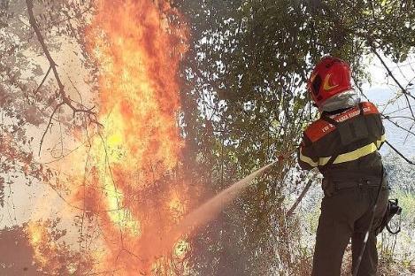 La Forestale in azione per domare i roghi (Foto Corpo Forestale)