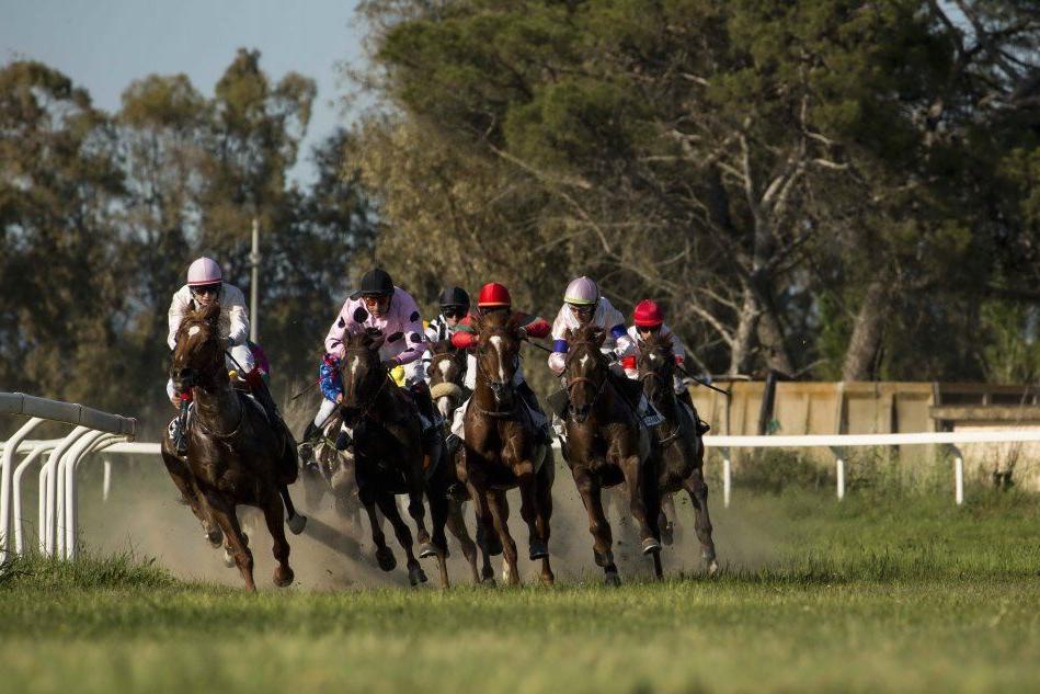 """Ippica, a Chilivani le corse del circuito degli Emirati Arabi e la prima """"listed race"""""""