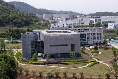 Il laboratorio di Wuhan\u00A0(Ansa)