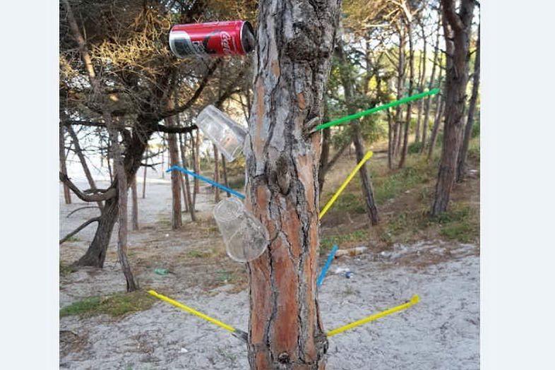 """Alghero: mangiano in spiaggia, lasciano la plastica e """"infilzano"""" i pini"""