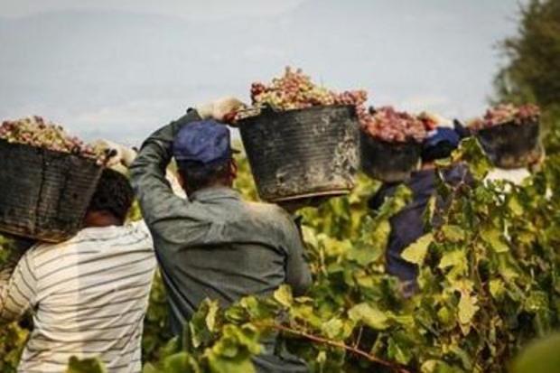 Sardegna prima in Italia per tasso di occupazione tra i migranti, è al 79%