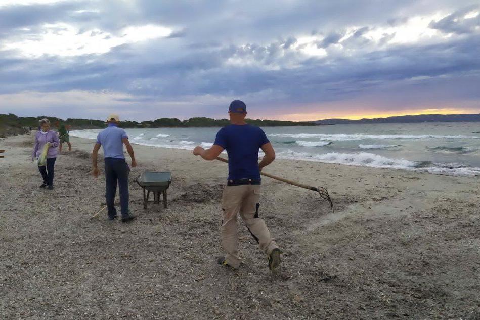 La pulizia delle spiagge (L'Unione Sarda - A.Scano)