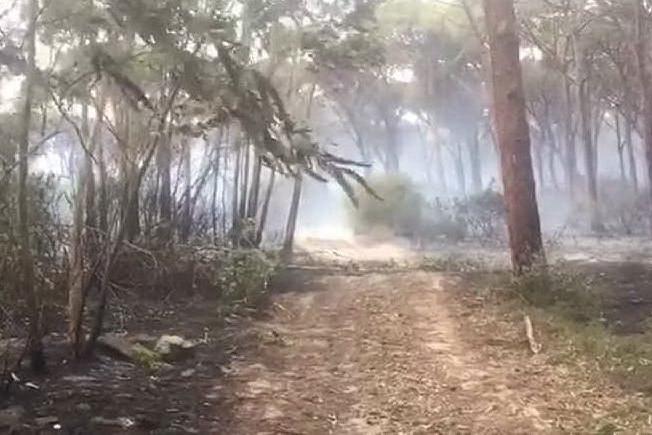 Fuoco ad Arborea, gli elicotteri in azione