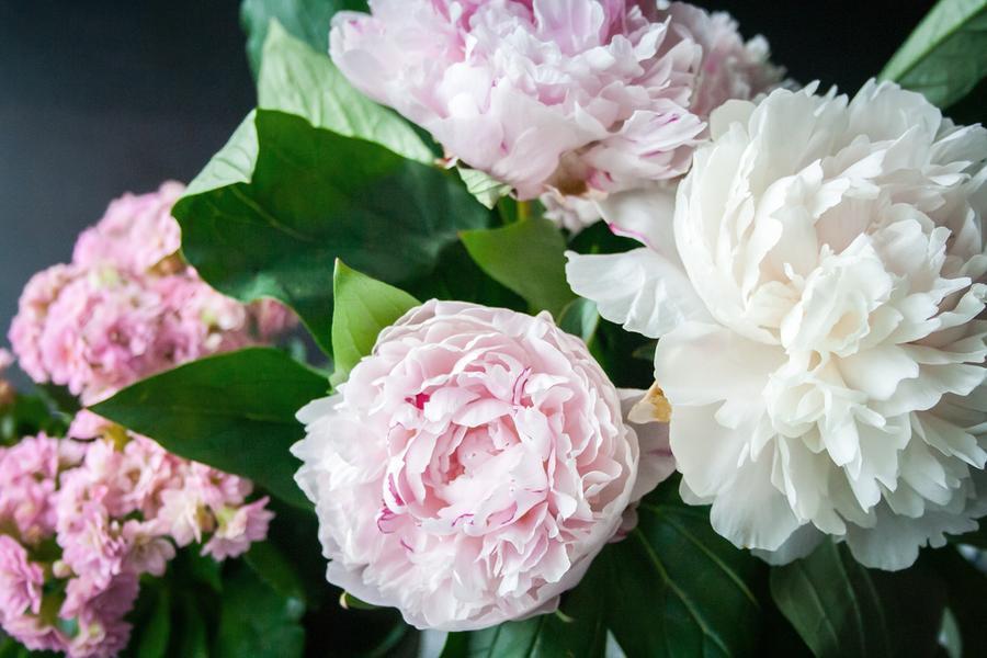 Festa della mamma, 6 italiani su 10 regalano fiori