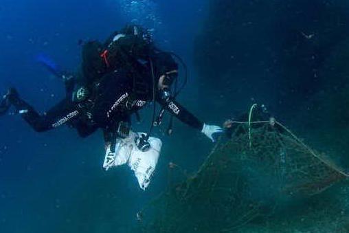 WWF Italia a caccia sentinelle-sub per salvare mare