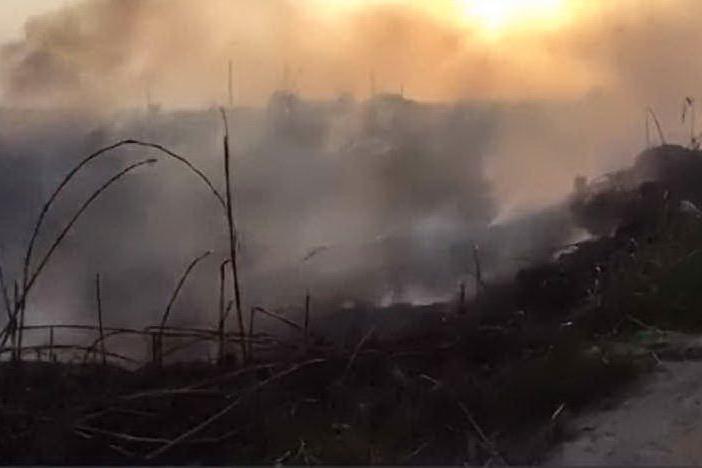 Un incendio nel parco naturale di Molentargius (Archivio L'Unione Sarda)