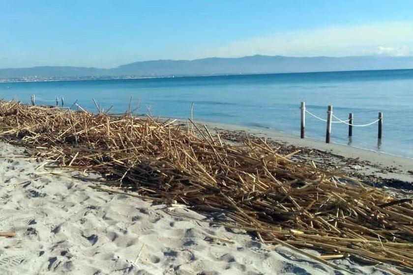"""Cagliari, """"le canne restano sulla spiaggia del Poetto"""""""