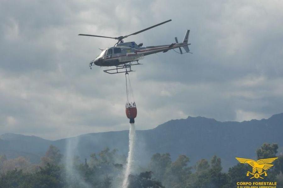 Incendio a Suni, in fiamme 20 ettari di territorio
